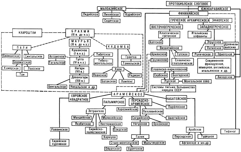 Генеалогическая схема развития