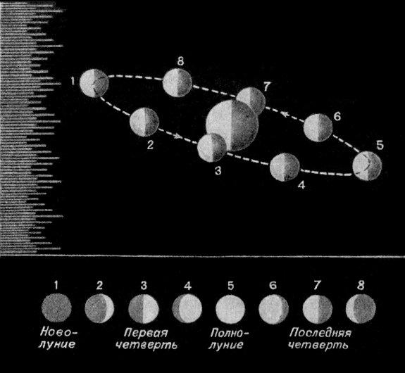 Объяснение смены фаз Луны: